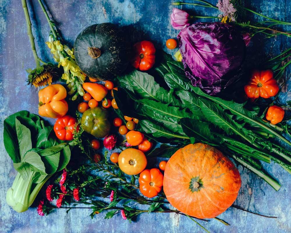 Ernährung Blog Gesund